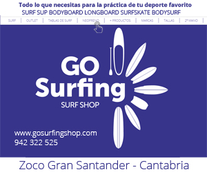 Go Surfing Shop